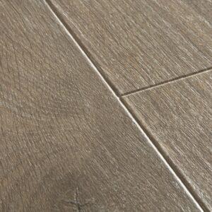 Quickstep-Majestic-Bosland-eik-bruin-MJ-3548-close-up.jpeg