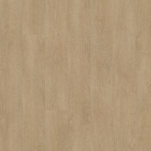 45505_Stilleven Rembrandt 245 online kopen